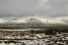 Winter (StickyToffeeQueen) Tags: winter snow sutherland lochglascarnoch