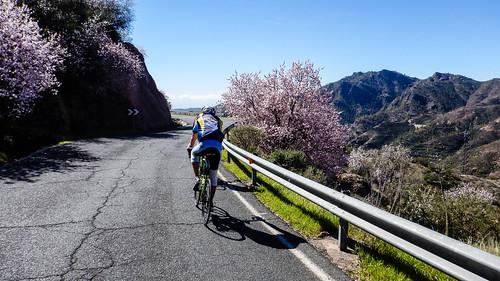 Abfahrt vom Pico de las Nieves