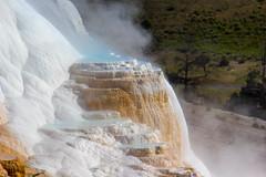 Yellowstone National Park (begineerphotos) Tags: yellowstonenationalpark yellowstone mammothhotsprings 15challengeswinner