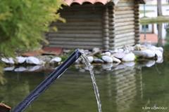 Denizli - amlk (ilgin.uzunoglu) Tags: macro canon turkey trkiye denizli havuz 650d kulbe amlk