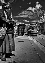 Sunday Afternoon In Chinatown Toronto Ontario (thelearningcurvedotca) Tags: life street city light portrait people urban blackandwhite toronto ontario canada man male men monochrome face outside outdoors person photography photo blackwhite downtown chinatown foto view background candid scene canadian photograph iamcanadian spadinaave bwemotions torontoist blackwhitephotos bej true2bw torontostreetcandids cans2s flickr10 blackandwhiteonly bwartaward discoveryphotos yourphototips briancarson blogtophoto thelearningcurvephotography wwwthelearningcurveca