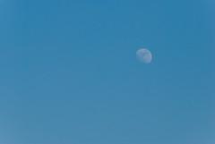 新年·初月/New Year·First Moon (KAMEERU) Tags: guangzhou new moon year