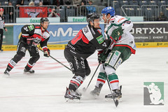 """DEL15 Kölner Haie vs. Augsburg Panthers 10.12.2014 039.jpg • <a style=""""font-size:0.8em;"""" href=""""http://www.flickr.com/photos/64442770@N03/16003457696/"""" target=""""_blank"""">View on Flickr</a>"""