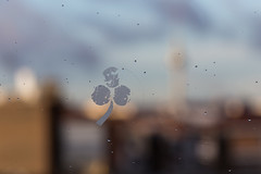 A city in every Shamrock. I need your luck. (The eclectic Oneironaut) Tags: madrid españa reflection glass canon eos drops spain cityscape dof blurred luck shamrock 6d trebol 2015 500px ifttt