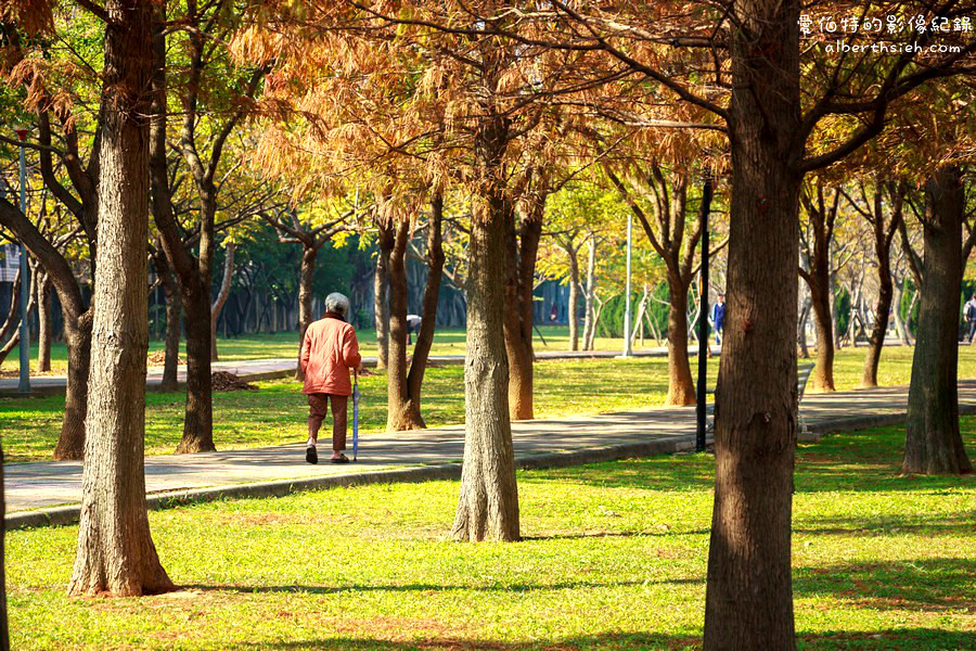 桃園區.玉山公園