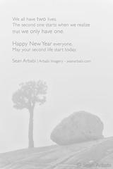 Happy New Year everyone! (arbabi) Tags: california trees usa tree nature rock fog america landscape grey alpine granite yosemitenationalpark sierranevada thickfog scenicoverlook olmstedpoint mariposacounty seanarbabi jeffreypine glacialerratics