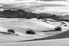Black and White (dshoning) Tags: blackandwhite deathvalley odc