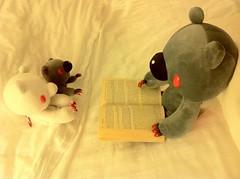 Storytelling Time.. (mechanic_mel) Tags: reading nighttime gloomybear toyphotography