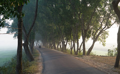 Bangladesh 4 - Dhaka to Agartala