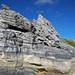 Calcarenitic eolianite (Hanna Bay Member, Rice Bay Formation, Holocene; Graham's Harbour, San Salvador Island, Bahamas) 14