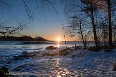 DSC_1793 (darrenmcandrew) Tags: sea sun ice beach finland frozen helsinki rocks