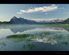 Blue Calm (Gordon Hunter) Tags: morning cloud mist lake canada mountains reflection water grass forest landscape still quiet rocky abraham calm steam gordon alberta hunter wilderness