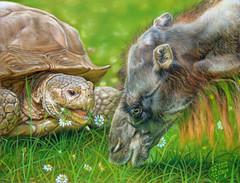 My daisies (irishishka) Tags: art painting turtle camel pastels figurative realism amimals