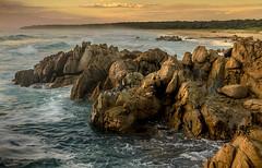 Moruya Heads rocks (photo obsessed) Tags: ocean park new wales sunrise coast south australia national heads newsouthwales moruya oceania 500px eurobodalla eurobodallanationalpark moruyaheads ifttt