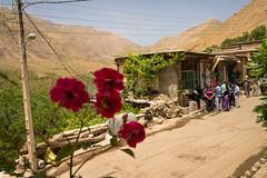 Hawraman e Takht (Nicolas Petit) Tags: travel iran persia e travelphotography wonderlust hawraman persien takht instatravel nicolaspetitfotografie