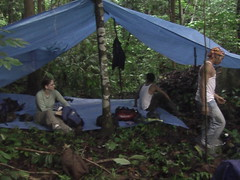 Resting in Our Jungle Camp