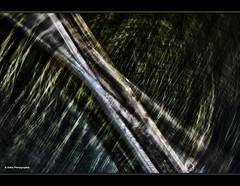 Drehkrper (geka_photo) Tags: deutschland wasser grau grn holz schleswigholstein gedreht pln wasserpflanzen gekaphoto wischbild
