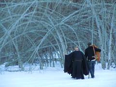 Zen Wedding Preparations (starmist1) Tags: trees winter wedding snowfield wilderness windblown arched bowed genjoosho