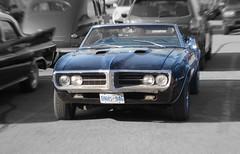 Dusty bird (60Fire) Tags: ontario canada black car classiccar automobile guelph chrome 1967 firebird pontiac