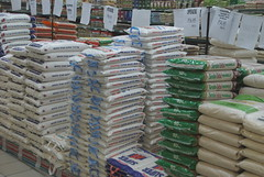 In a supermarket in Chobe, Botswana (Matthew L Stevens) Tags: africa botswana supermarket food starch