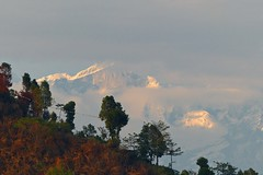 View of Annapurna ranges in the Himalayas (PsJeremy) Tags: nepal misty clouds snowcapped himalaya shrouded