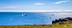 Spot the Whale (bredsig) Tags: travel green ice water island lava hiking hike arctic greenland whale iceberg polar humpback spout basalt gl disko qeqertarsuaq diskoisland godhavn kitaa kuannit