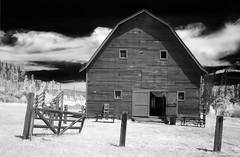 the AA Barn - Infrared (eDDie_TK) Tags: rural ir colorado farming barns co grandlake infrared farms rurallife ruralliving grandcounty grandlakeco grandcountyco