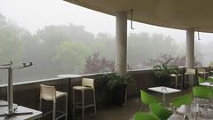 Orage sur le Parc Lafontaine (Robert Saucier) Tags: montreal montral parclafontaine vert green pluie rain raindrops chaises chairs tables arbres trees img3788 orage rainfall