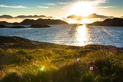 Road to Lofoten (Kuutti Heikkil) Tags: lofoten norway driving views sea sky sunset sun set lens flare