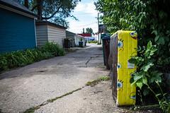 (224/366) Spongebob Squaretrash (CarusoPhoto) Tags: hd pentaxda l 1850mm f456 dc wr re hdpentaxdal1850mmf456dcwrre pentax ks2 john caruso carusophoto photo day project 365 366 spongebob mattress alley trash garbage yellow street banal mundane everyday ordinary
