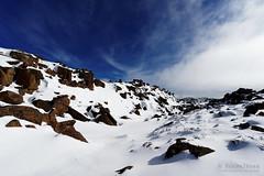 20160807-27-Rodway Range bouder Field completely filled with snow (Roger T Wong) Tags: australia mtfield mtfieldnationalpark np nationalpark rodwayrange sel1635z sony1635 sonya7ii sonyalpha7ii sonyfe1635mmf4zaosscarlzeissvariotessart sonyilce7m2 tasmania bushwalk hike outdoors snow tramp trek walk winter