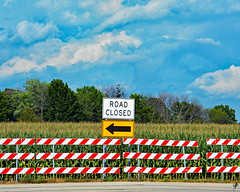 Growing season (jcdriftwood) Tags: growingseason crop corn farm field road sign closed baracade arrow traffic sky trees