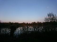 DSC_0003 (2) (jhoneyball) Tags: 2016 dintonpastures sunset z3c
