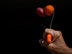 A Radish and a Clementine Impaled on a Meat Hook (ricko) Tags: hand fist meathook radish clementine orange impaled 226366 2016 wah werehere