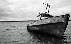 patricia p (photoluver1) Tags: boat bw ship blackandwhite seas seashore shoreline beauty decay rust corrosion