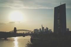 Frankfurter Skyline (fred_zwie) Tags: frankfurt ezb skyline europischezentralbank