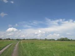 Driveway (zinushana) Tags:      clouds sky field