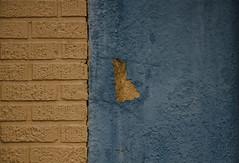 yellow :: blue (dotintime) Tags: yellow blue brick concrete wall paint color swatch peel cornflower sky dotintime meganlane
