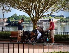 Break Time (donna_0622) Tags: break sitting kids strollers epcot fl florida orlando nikon d750