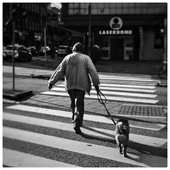 INSTAGRAM 365 Day 257: Two buddies out for a walk (tomas_nilsson) Tags: instagram365 sweden malm street streetphotography dogs dogwalker candid monochrome monochromephotography blackandwhite blackandwhitephotography igersmalmoe cellphonephotography lg g4 snapseed postprocessing
