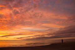 Sky Burst (SueZinVT) Tags: brewsterflats beach sunset silhouettes suezamecnik sky shore clouds water