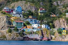 St. John's Houses (Bob Kirschke) Tags: capespear fortamherst stjohns newfoundlandandlabrador canada ca harbour hills bobkirschke
