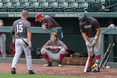 Fall Ball - Sept 15-22 (Rhett Jefferson) Tags: anthonydahl arkansasrazorbackbaseball hunterwilson jakearledge zackplunkett