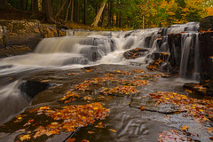 Fallen Leaves in the Falls (eahackne) Tags: waterfall fall autumn color quartzitefalls upperpeninsula slateriver