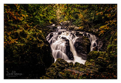 The Falls of Braan, The Hermitage (NorthernXposure) Tags: falls braan hermitage dunkeld perthshire scotland woodland landscape autumn