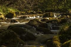 Mountain stream (Miksi992) Tags: canon d600 nature fresh water river creek stream mountain soil rock bosnia vlasic outdoor landscape waterfalls ugar ugric