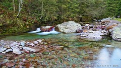 Crystal waters (_Nick Photography_) Tags: img8104 creek trout stream nature nickphotography canoneos6d valsanguigno parcodelleorobiebergamasche longexposure crystalwaters nd4filter tripod hiking torrente wood slowmotion fondovallemontagna