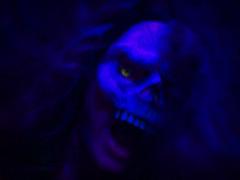 midnight in the garden of evil (MacroMarcie) Tags: macromarcie iphone7 iphone7plus midnight october halloween shocktober skull mask dark blue night shocking unsettling hereios wah wh werehere 365 selfie selfportrait project365 garden evil midnightinthegarden