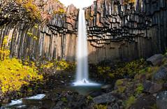 Svartifoss (benzhtan) Tags: iceland svartifoss skaftafell vatnajökull national park vatnajökullnationalpark nationalpark water waterfall rocks cliffs basalt columns basaltcolumns canon canoneos70d 24f14l