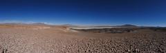 Salar de Tara y Laguna Escondida (Mono Andes) Tags: andes chile punadeatacama regióndeantofagasta salardetara salar panorama altiplano desierto reservanacionallosflamencos